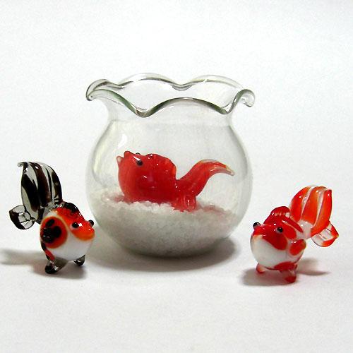 【新商品紹介】 金魚3種入荷しました♪